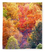 Fall Trees 3 Fleece Blanket