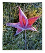 Fallen Autumn Leaf In The Grass During Morning Frost Fleece Blanket