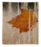 Fallen Color Fleece Blanket