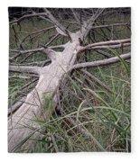 Fallen Pine Tree Fleece Blanket