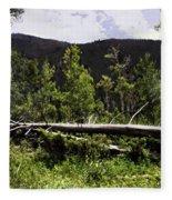 Fallen Tree Fleece Blanket
