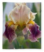 Fancy Iris Dance Ruffles Fleece Blanket