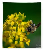 Fanfare For The Common Bumblebee Fleece Blanket