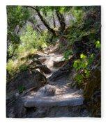 Feather Falls Stairway Fleece Blanket