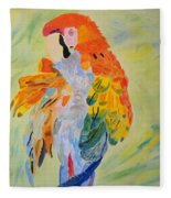 Feathers Showing God's Painting Fleece Blanket