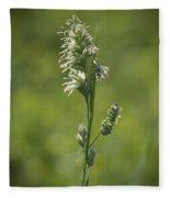 Feathery Reed Canary Grass Vignette Fleece Blanket