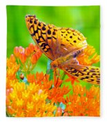 Feeding Butterfly Fleece Blanket