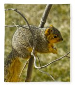 Feeding Tree Squirrel Fleece Blanket