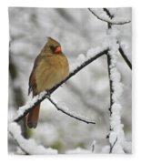 Female Cardinal 3656 Fleece Blanket
