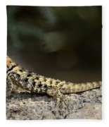 Female Desert Spiny Lizard  Fleece Blanket