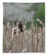 Female Redwinged Blackbird Fleece Blanket