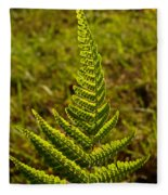 Fern Frond And Sporangia 1 Fleece Blanket