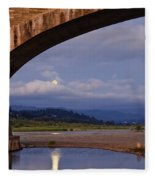 Fernbridge And The Moon Fleece Blanket