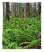 Ferns And Redwoods Fleece Blanket