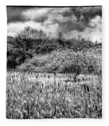 Field Of Cattails II Fleece Blanket