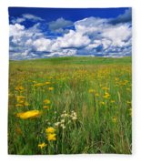 Field Of Flowers, Grasslands National Fleece Blanket