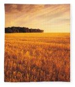 Field Of Grain Stubble Near St Fleece Blanket