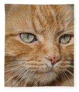 Fierce Warrior Kitty Fleece Blanket