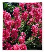 Fiery Pink Fleece Blanket