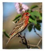 Finch In Lilac Bush Fleece Blanket