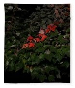 First Fall Colors At Night Fleece Blanket