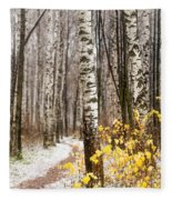 First Snow. Hidden Path Fleece Blanket