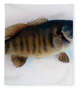 Fish Mount Set 10 A Fleece Blanket