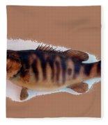 Fish Mount Set 11 B Fleece Blanket