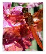 Flame Skimmer Dragonfly Fleece Blanket