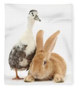 Flemish Giant Rabbit And Call Duck Fleece Blanket