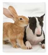 Flemish Giant Rabbit And Miniature Bull Fleece Blanket