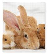 Flemish Giant Rabbit With Guinea Pigs Fleece Blanket
