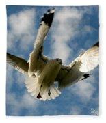Flights Backed Up Fleece Blanket