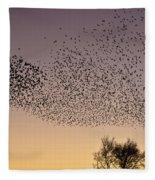 Flock Of European Starlings Fleece Blanket