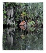 Florida Bayou Fleece Blanket
