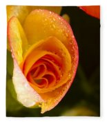 Flower Rieger Begonia 5 Fleece Blanket