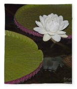 Victoria Amazonica White Flower Fleece Blanket