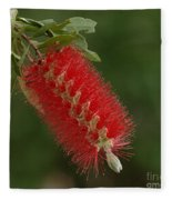 Flowers Of New Zealand 1 Fleece Blanket