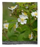 Flowers On The Fence Fleece Blanket