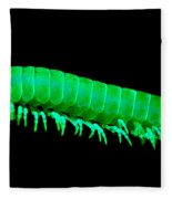 Fluorescent Millipede Fleece Blanket