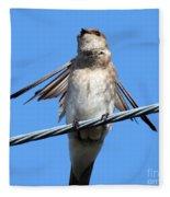 Fluttering Swallow Fleece Blanket