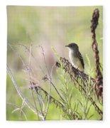Flycatcher On A Twig Fleece Blanket