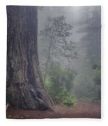 Fog And Redwoods Fleece Blanket