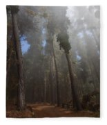 Foggy Poli Poli Fleece Blanket