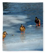 Follow The Leader Duck Style Fleece Blanket
