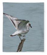 Foot Up Wing Test Fleece Blanket