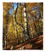 Forest Fall Colors 4 Fleece Blanket