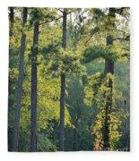 Forest Illumination At Sunset Fleece Blanket