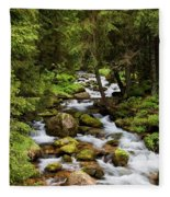 Forest Stream In Tatra Mountains Fleece Blanket