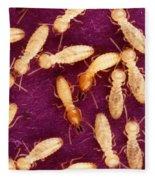 Formosan Termites Fleece Blanket
